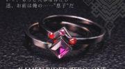 【仮面ライダーゼロワン】『滅&迅 親子の絆セットリング』が受注開始!二つのリングを合わせると滅亡迅雷のマークが!